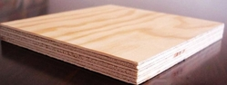 Commercial Plywood Supplier in UAE
