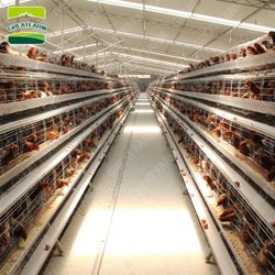 GREATFARM®Chicken Cage