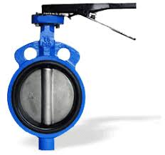 Butterfly Valve in Abu dhabi