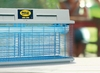 INSECT KILLER UAE