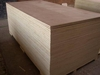 ASHWOOD SUPPLIERS IN UAE