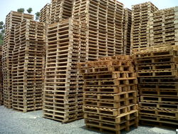 PALLETS & SKIDS from AL DAWAR WOODS TRADING