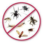 Pest Control Services from CLEAN TECH SERVICES LLC