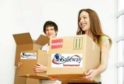 CARGO SERVICES AIR from SAFEWAY INTERNATIONAL MOVING & SHIPPING LLC