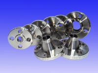 SS 316L Flanges from KALIKUND STEEL & ENGG. CO.
