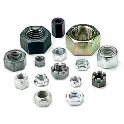 Stainless Steel Nuts from SANGHVI OVERSEAS