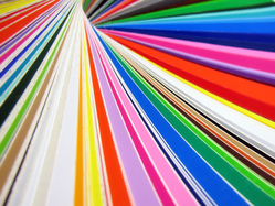 PAINTS from TOTAL SOLUTIONS BUILDING MATERIAL TRADING LLC