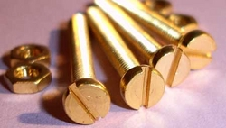 Brass bolt suppliers dubai from FRONTLINE BUILDING MATERIALS TRADING CO LLC