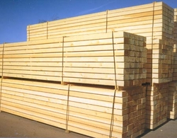 White wood Supplier in UAE from AL SADAF AL ABYADH BUILDING MATERIALS TR. LLC