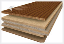 BEECH WOOD IN UAE from EMIRATES TRADING ENTERPRISES L.L.C