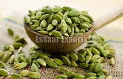Green Cardamom from ESSAAR EXPORTS