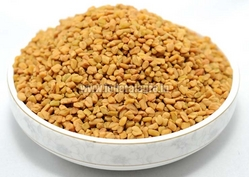 Fenugreek Seeds from FEDERAL AGRO COMMODITIES EXCHANGE & SUPPLY CO.
