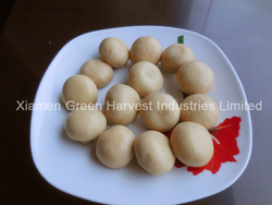 CANNED MUSHROOM whole & pns from China good price from XIAMEN GREEN HARVEST INDUSTRIES LIMITED