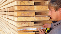 ALL KINDS WOOD   from ABBAR GROUP (FZC)