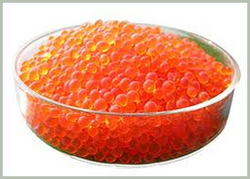 SILICA GEL, Orange Blue White Silica Gel Balls Grains, Granules, Activated Alumina, Moisture Absorbents, Desiccants, Molecular Sieves, Dealers, Exporter, Suppliers, Stockist in Dubai, UAE, India, Africa, Saudi, Egypt, Kenya, Tanzania, Kuwait, Oman, Iran from CHAMPIONS ENERGY, FENCE FENCING SUPPLIERS UAE, WWW.CHAMPIONS123.COM
