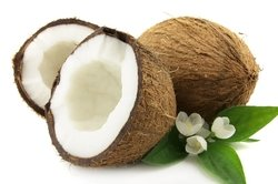 COCONUT HUSK from SRM GLOBAL EXPORTS