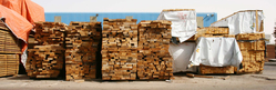 Timber Dealers in UAE from S I T LTD (SABINA INTERNATIONAL TRADING LTD)