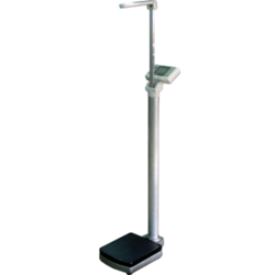 BMI Scales suppliers in uae from CITY SCALES FZC