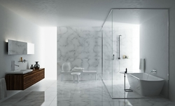 SHOWER GLASS & MIRROR  from BOTICO - ALUMINIUM AND GLASS