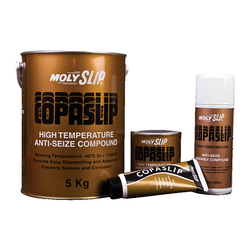 Copaslip Anti-Seize Lubricants Copaslip Anti-Seize Lubricant - 500gm from SKY STAR HARDWARE & TOOLS L.L.C