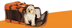 PET RELOCATION SERVICES from HICORP TECHNICAL SERVICES
