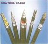 CONTROL CABLE IN UAE from BLUE CHIP INTERNAL COMMUNICATIONS