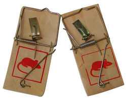 SNAP TRAP WOODEN