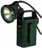 EXPLOSION PROOF WORKING LAMP