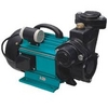 SELF PRIMING PERIPHERAL PUMP SUPPLIER UAE