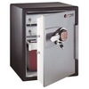 fire proof cabinet supplier in UAE