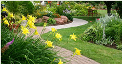 Landscape Contractors from EMIRATES POOLS L.L.C