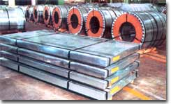 Stainless Steel Coils / Sheets
