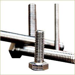 Stainless Steel Screws from RAJSHREE OVERSEAS
