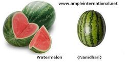 Watermelon from SPECTRUM STAR GENERAL TRADING L.L.C