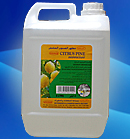 CITRUS PINE DISINFECTANT  from CHEMEX CHEMICAL AND HYGIENE PRODUCTS L.L.C