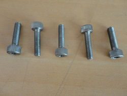Allen Screw from OM EXPORTS
