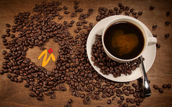 Coffee Importers & Merchants