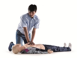 Medical Training Manikin from KREND MEDICAL EQUIPMENT TRADING LLC