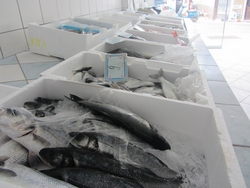 Thermocole fish and veg boxes from ASPEN POLYSTYRENE INDUSTRY
