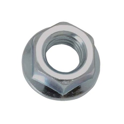 Hex Flange Nut from NANDINI STEEL