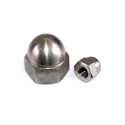 Cap Nuts from NANDINI STEEL