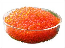 Silica gel orange supplier in UAE from NUTEC OVERSEAS