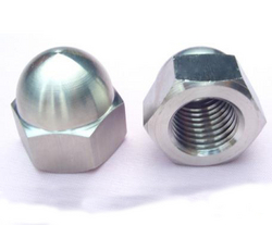 cap nut  from KRISHI ENGINEERING WORKS