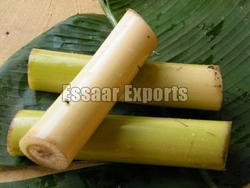 Fresh Plantain Stem from ESSAAR EXPORTS