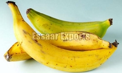 Fresh Plantain Banana from ESSAAR EXPORTS