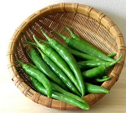 Fresh Green Chilli from ESSAAR EXPORTS