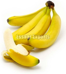 Top 34 Suppliers of Fresh Bananas in Kuwait