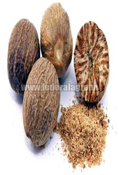 Nutmeg from FEDERAL AGRO COMMODITIES EXCHANGE & SUPPLY CO.