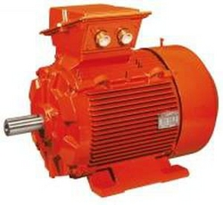 AC Motors suppliers in UAE from EMIRATES POWER-WATER SERVICES
