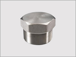 Hexagonal Plug from KALPATARU PIPING SOLUTIONS